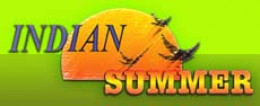 Indian Food in Newquay: Indian Summer Indian Restaurant and Takeaway.