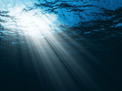 Did you know that the water on Earth is 97% salted and 3% fresh ?