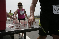 Running a Marathon - How much Fluid Should you Drink during a Race?