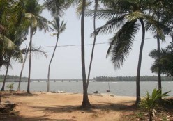 An Unexpected Visit to the Kadalundi Beach and Bird Sanctuary in Kerala
