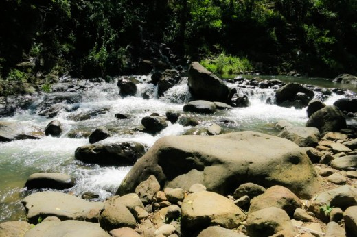 Enjoy the grandeur of nature in 7 Waterfalls in Mambukal Resort!