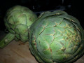 How to Prepare and Eat an Artichoke.