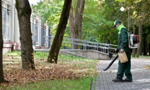 Leaf Blower Safety Tips