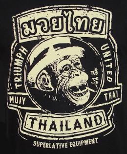 thailand muy thai kickboxing monkey