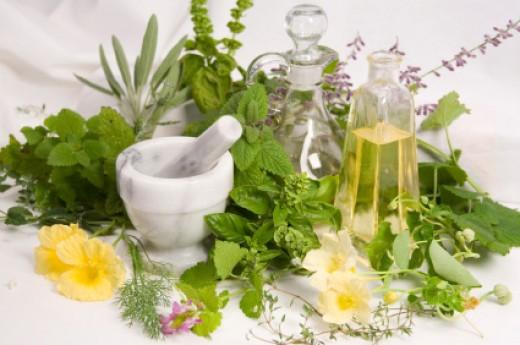 Herbal bases