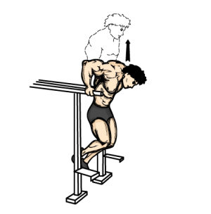 Leaning forward like pictured above will greatly emphasize the pectoral muscles over the triceps.