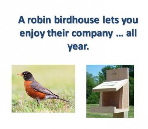 Robin Birdhouse Plans
