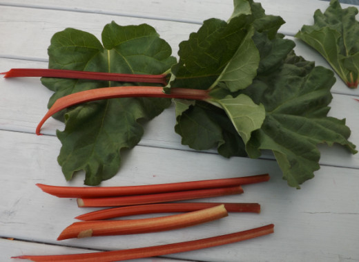 Remove the Leaves from the Rhubarb