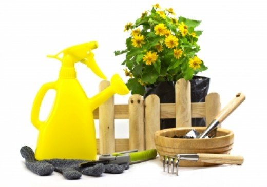 Remember that gardening supplies can be dangerous too. Keep tools and chemicals locked away.