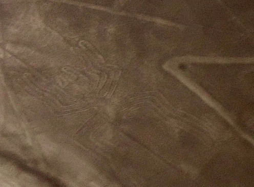 Nazca Lines Photo: The Spider