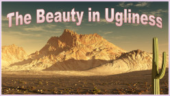 The Beauty in Ugliness (Perspectives)