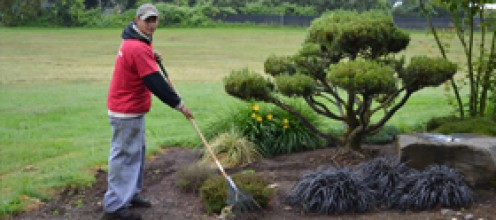 Maintenance and yard care. In Oregon and Washington, snow removal too!