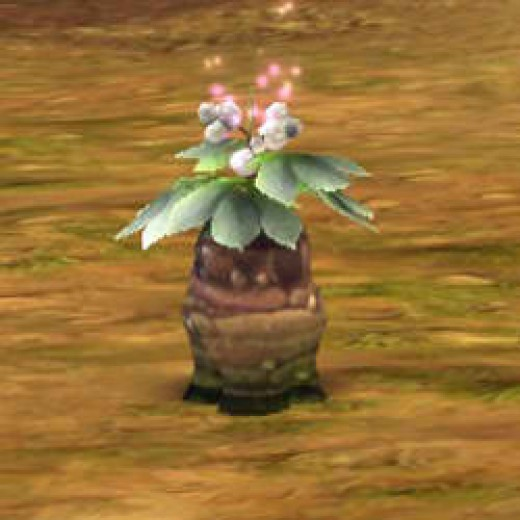 Umblia is a gatherable which looks like a plant. It is use din potionmaking.