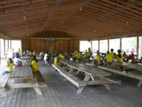 The park has covered and uncovered picnic tables. Also, They have a wooded area for picnics on the open ground.