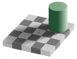 Optical and Visual Illusions Including Puzzles For The Brain And Eyes - Videos and Photos