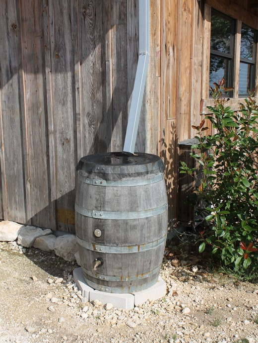 Simple wooden 55 gallon drum collects rain water until it overflows.