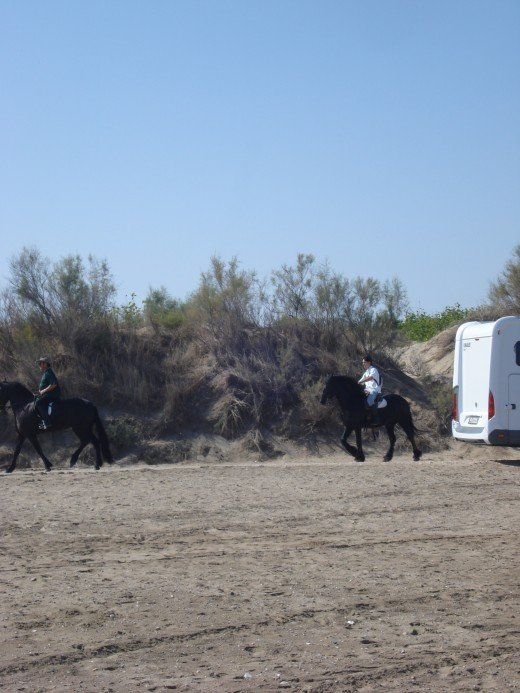 Riumar Beach, Spain - Dog's Beach - Horse Backriding Tour