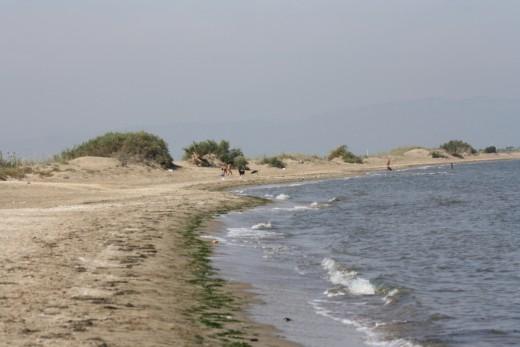 Riumar Beach, Spain - Dog's Beach - Horse Backriding Tour