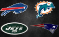 AFC East 2013 Preview:  Miami Dolphins Poised to Challenge New England Patriots