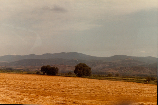 Southern Italy countryside