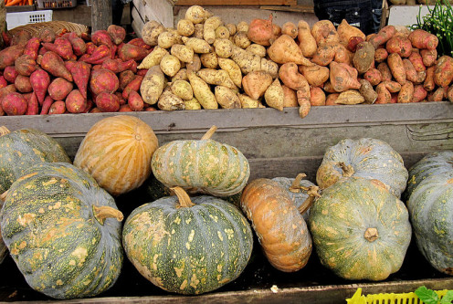 Top Row: Four varieties of sweet potatoes. Some are very light in color, while some can be purple or almost black.