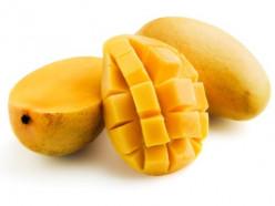 Top Ten Mango Producing Countries