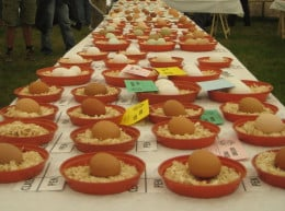What to do in Cornwall in July: Prize Eggs at Stithians Agricultural Show