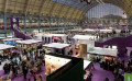 7 Steps to Follow when Planning to Exhibit at International Trade Shows