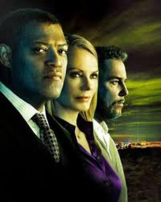 Crime Scene Investigation or CSI produced 194 shows and ran for eleven seasons. It showed the inner workings of the law.