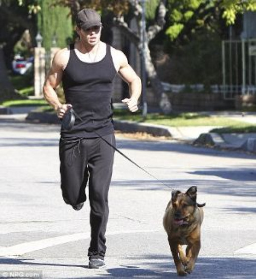Morning runs with your dog.