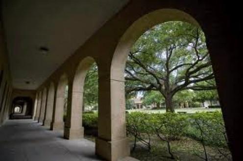 Louisiana State University Baton Rouge, Louisiana
