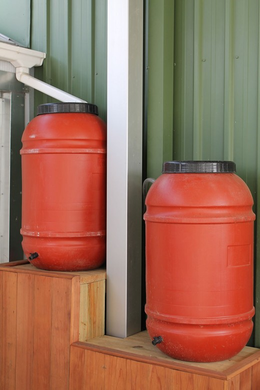 Two 55 gal collection barrels as set up on a wooden step down platform.  As the top fills to overflow it fills the bottom barrel