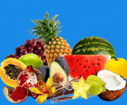 Tropical Fruit Varieties