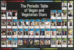Going Vegan From Vegetarian