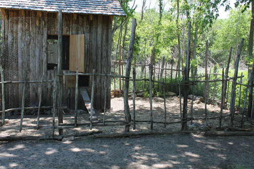 Sticks were used to make this chicken coop but could also make a garden fence or trellis.