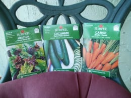 Grow veggies from seed