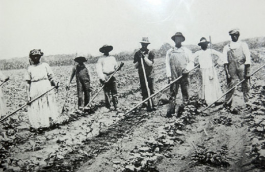 Workers on a cotton plantation in the US south.