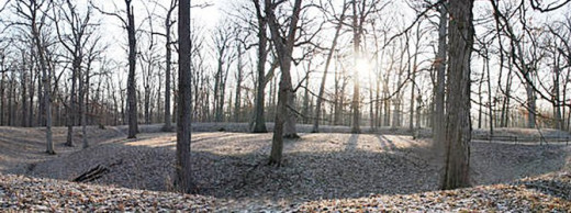 The Great Mound - Trees have grown up on the mound since Indians used it for ceremonies
