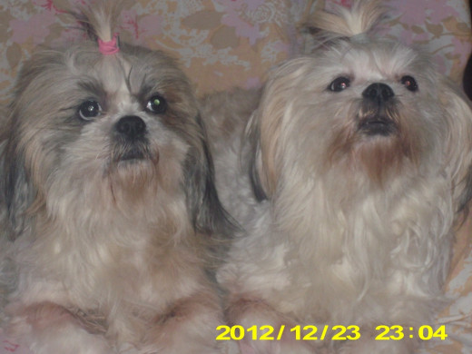 Mother(Abbigail) on the left. Daughter(Sunny) on the right