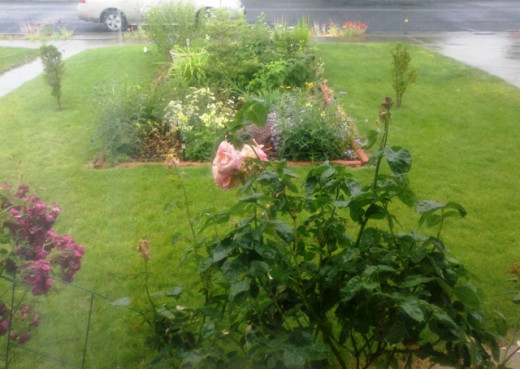 A view of the centerpiece garden from the living room window.
