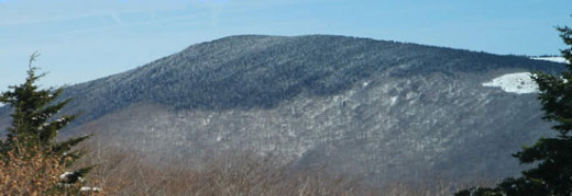Winter mantle on Mount Rogers, Virginia.