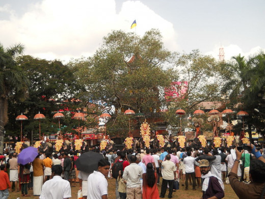 The crowd assembled to watch the Pooram fest