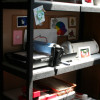 How to organize your die cuts and machines ~ for Paper Crafters!