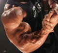 Best Arm Workouts For Size & Definition