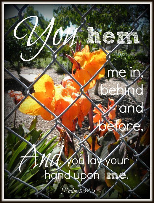 "I used this photo of a flower behind a fence for this design art because of the word ""hem"" used in Psalm 139:5 . I later re-did the design to include both 5 and 6 together. God knows us ahead of time, and in between! Beautiful Christian verse."