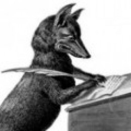 The Writer Fox
