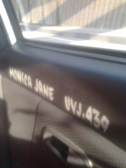 Taxi info painted on the door panel