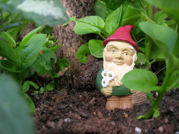 Garden gnome: a must-have!