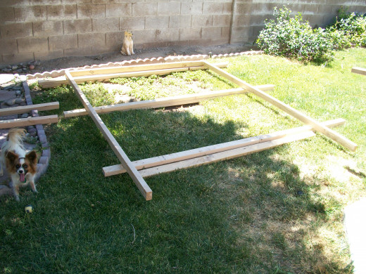 The second side wall frame was built in partial shade.
