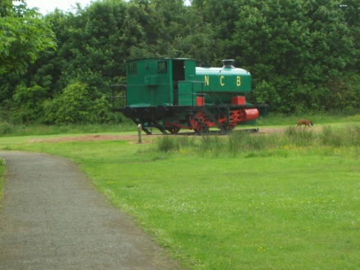 An old steam locomotive that was used to carry coal from the Mary Pit at Lochore. This is situated next to the pit head.
